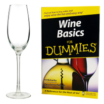 Luminarc Wine For Dummies Sparkling Wine Glass Set with Book 5 Piece