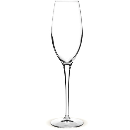 Luigi Bormoili Vivendo Champagne Glass, Set of 4