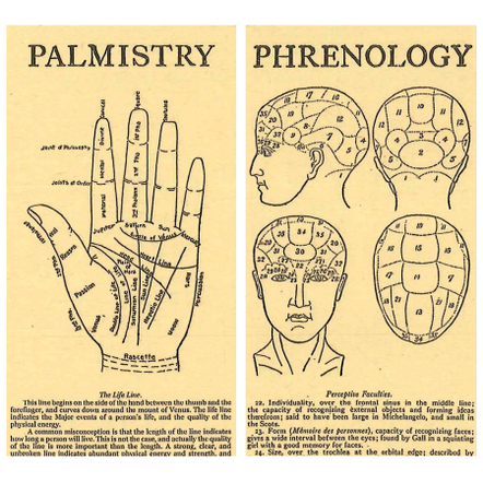 Homart Long Decorative Matches In Phrenology and Palmistry Box