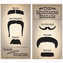 Homart Long Decorative Matches In Mustache Brigade Box
