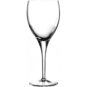 Luigi Bormioli Michelangelo Masterpiece Wine Glass, Set of 4